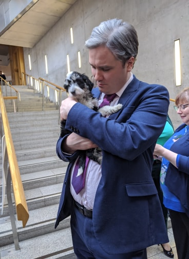 TOM ARTHUR MSP SUPPORTS NEW DRIVE TO CURB ONLINE PUPPY SALES